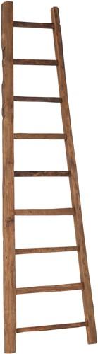 d-Bodhi Home Solutions ladder hoog